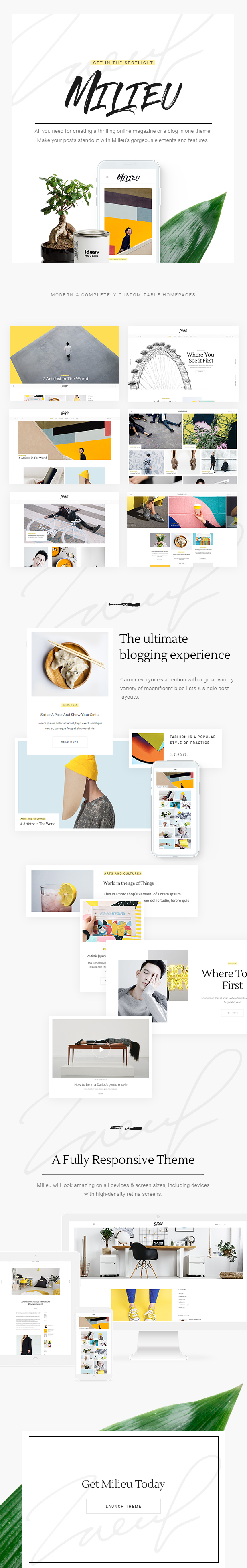 WordPress theme Milieu - Art, Style and Culture Magazine (News / Editorial)